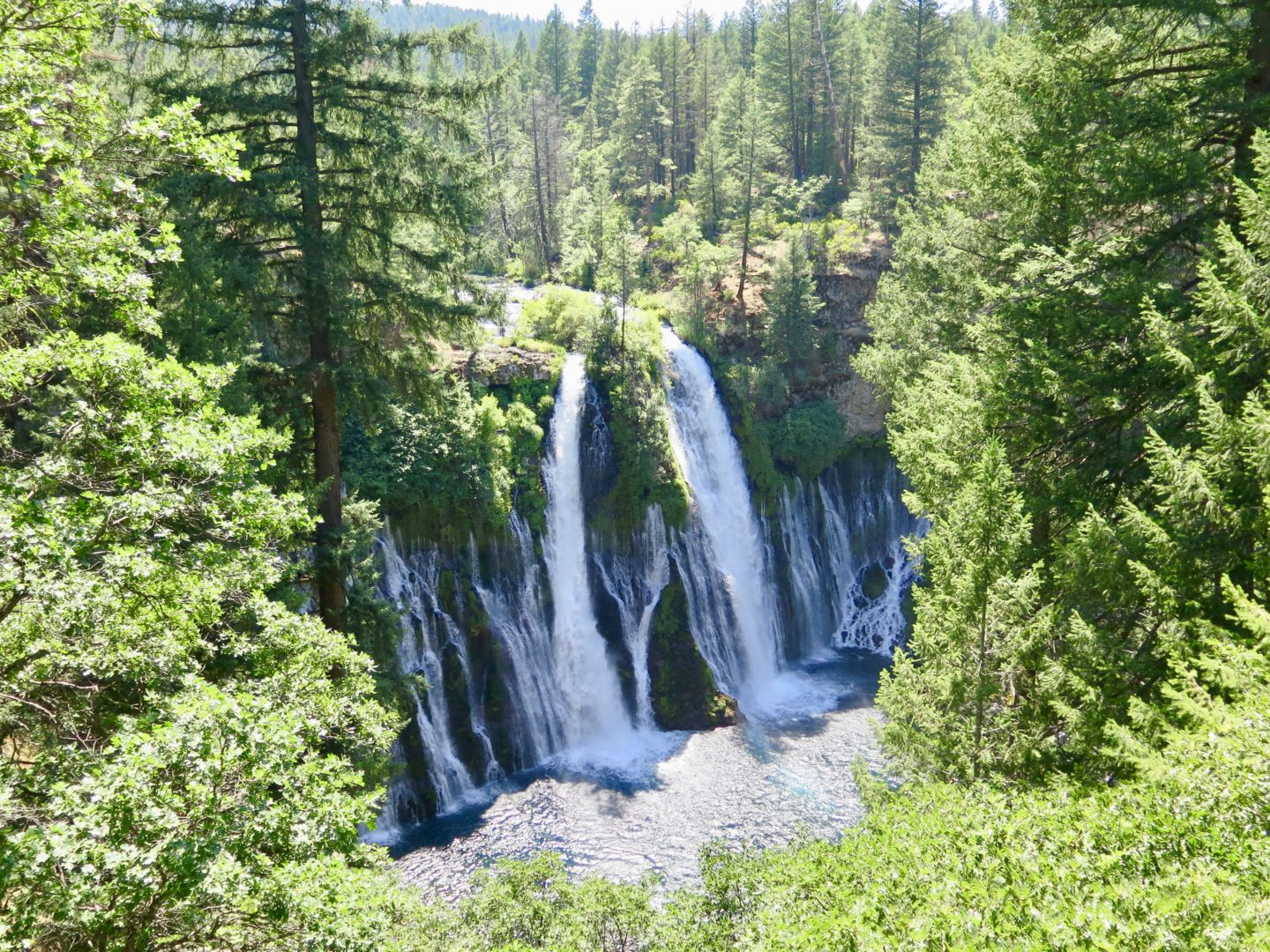 Burney Falls from top of the trail